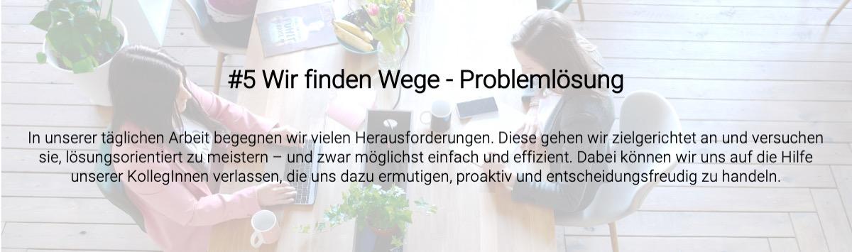 unternehmenswert_problemlösung